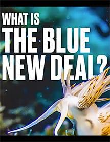 blue-new-deal